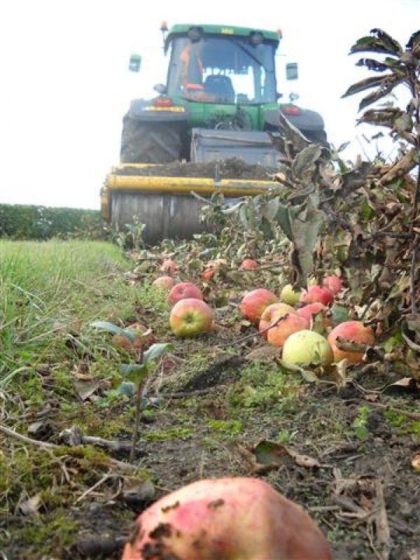 appel boomgaard frezen