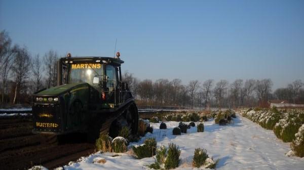 buxus kwekerij veranderen in landbouwgrond